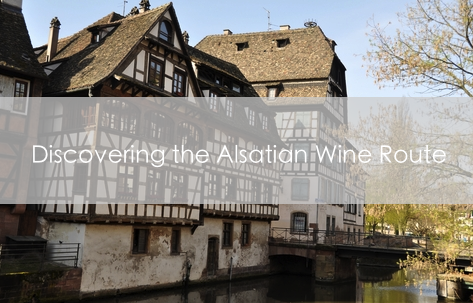 Discovering the Alsatian Wine Route