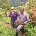 Uganda, gorillas